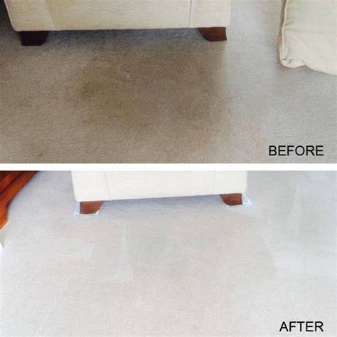 carpet cleaning in romford servicemaster clean