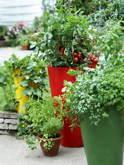 Pot Gardening Vegetables Growing Vegetables In Containers Stagger Height