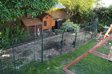 fenced run simple the new chicken fence