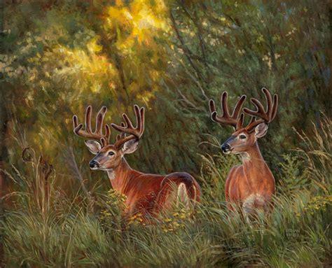 groupon paint nite deer original painting whitetail deer kirby quot autumn