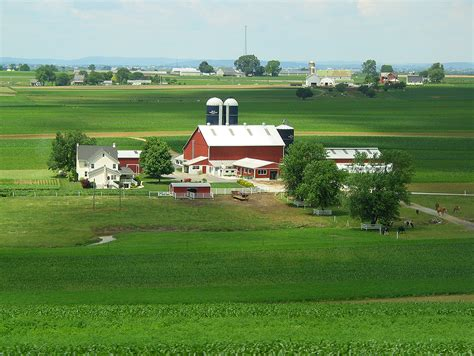 pictures of farm another valentine a different romance plain and fancy