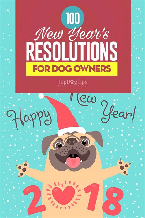 100 new year s resolutions ideas for dog owners in 2018