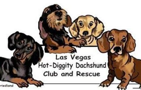 puppy rescue las vegas haute doggery hosts haute adoption event at the linq promenade on friday