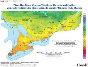 canadian hardiness map hardiness myths vanluyk garden centre and nursery