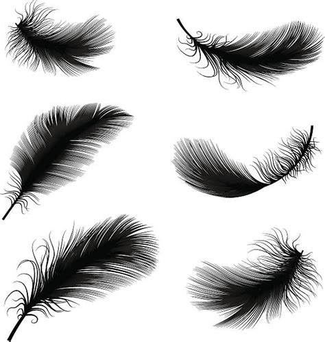tattoo pen vector royalty free feather clip art vector images