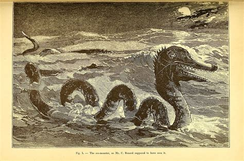 The Great Sea Serpent file the great sea serpent page 57 bhl41617299 jpg