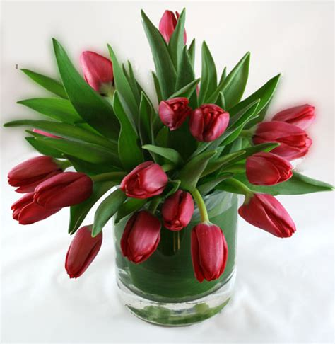 tulips arrangements tulip cascade flower arrangement