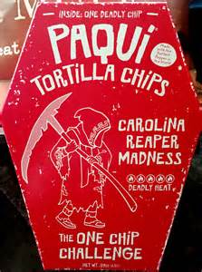 one challenge review paqui tortilla chips the one chip challenge