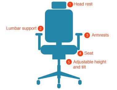 Ergonomic Features Of A Chair by How To Select The Right Ergonomic Chair