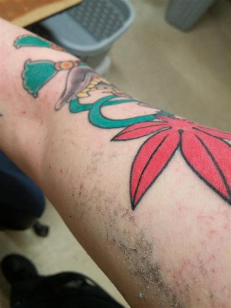 tattoo care after saniderm tegaderm saniderm tatuderm healing process page 21