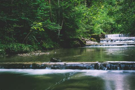 stock photo  brook creek nature