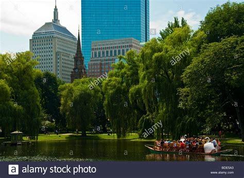 swan boats photos swan boats boston stock photos swan boats boston stock