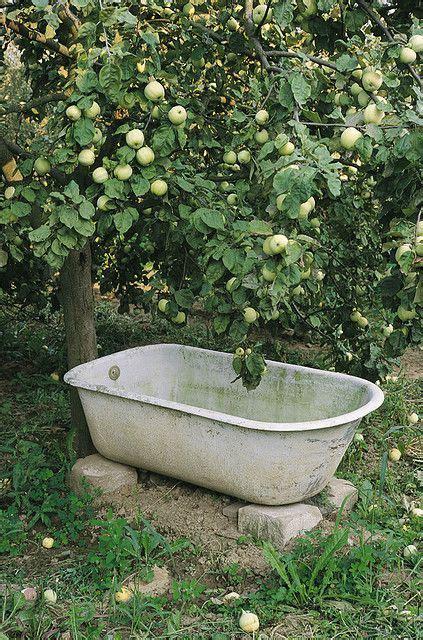 25 beautiful garden bathtub ideas on garden