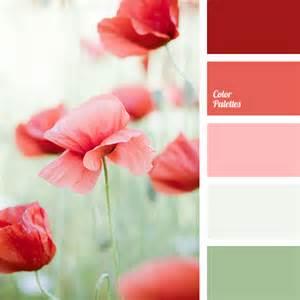 poppy color colour of poppies color palette ideas