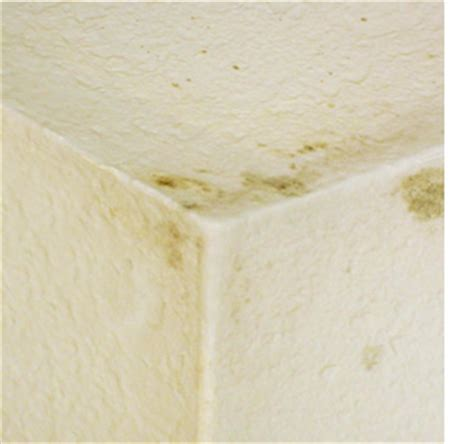 how to get rid of mould on ceiling in bathroom home dzine bathrooms how to get rid of mould and stains
