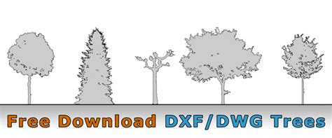 Best Free 2d Cad free tree drawing architektur cad baum symbol dwg dxf