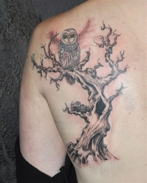 owls in a tree tattoo on shoulder blade tattooimages biz