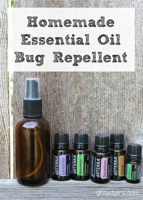 homemade bed bug repellent homemade essential oil bug repellent traditional cooking
