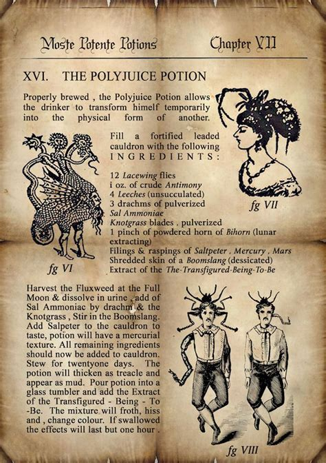 four ingredient cookbook books 339 best hp class potions images on harry