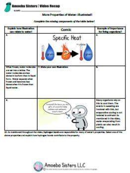 2 2 Properties Of Water Worksheet by Properties Of Water Select Handout Answer Key By Amoeba