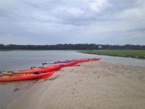kayak cape cod nauset marsh south trail picture of cape kayaking