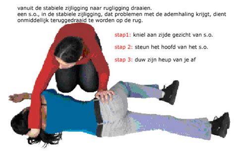 Rug Shooer Rental by Heb Carpet Shooer Rental 28 Images Stabiele Zijligging