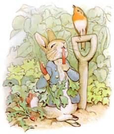follow piper beatrix potter peter rabbit