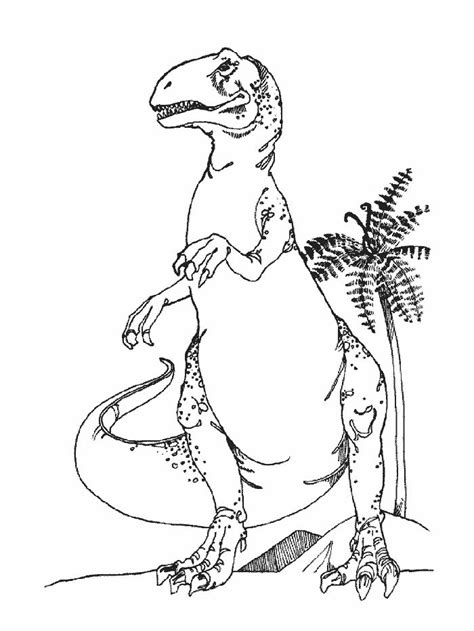 17 Best images about Coloring Pages Dinosaurs Dragons on