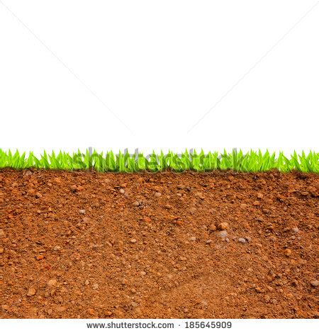 Soil Cross Section by Stock Photos Royalty Free Images Vectors