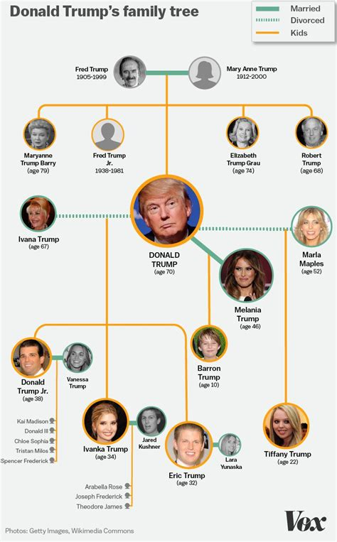 donald trump family photos the entire donald trump family tree in one graphic vox