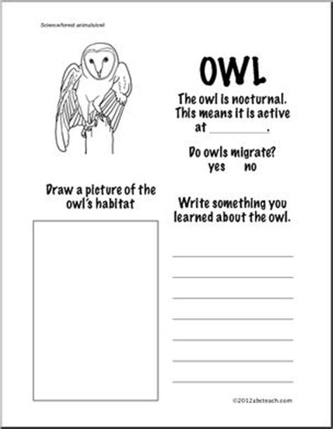 owl quiz printable owl habitat worksheet information about owls first