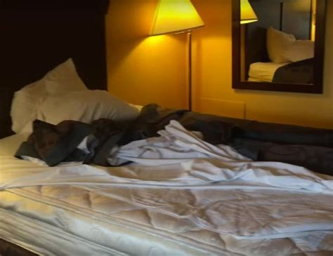 snorting bed bugs is this the dirtiest hotel room ever guests horrified by