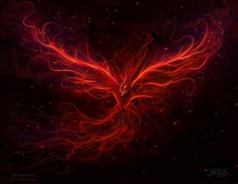 phoenix tattoo wallpaper mythology images the phoenix rise hd wallpaper and