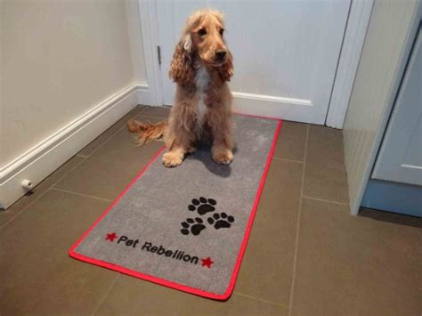 Muddy Paws Mat by Pet Rebellion Stop Muddy Paws Non Slip Mat 163 14 00