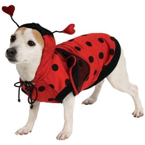 ladybugs in dogs ladybug bug pet costume