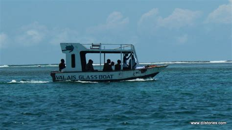 glass bottom boat mombasa snorkel in mombasa with captain wagna no grannies in africa