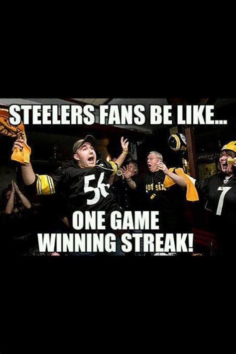 Steelers Fans Memes - 43 best teams vs teams images on pinterest