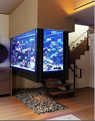 amazing home wall aquariums design ideas youtube aquarium tanks and the stone on pinterest