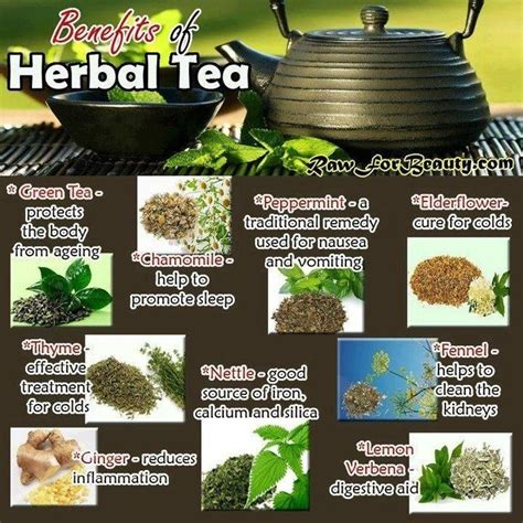 to health with herbal tea drink to a healthier books benefits of herbal tea plant grow make bake eat drink