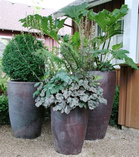 natural large planters  outdoors homesfeed