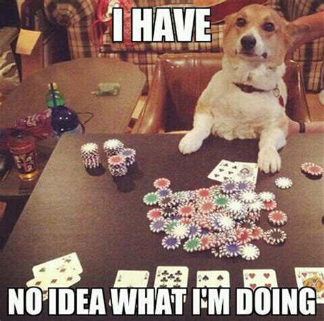Funny Casino Memes - i have no idea what i m doing meme 12 dump a day