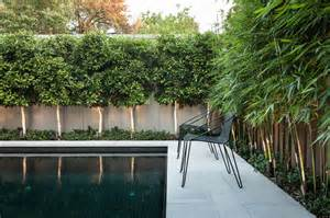 Sofas Melbourne Sale Ddb Design Exteriors Amp Pools Contemporary Pool