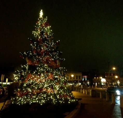 city tree lighting grand illumination city tree lighting annapolis com