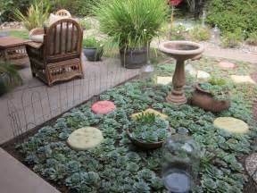 jenny tabarracci succulent cutting gardens