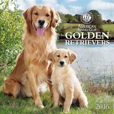 gifts for golden retriever golden retriever gifts golden retriever calendars