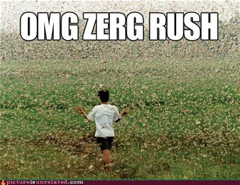 Zerg Rush Know Your Meme - image 110505 zerg rush know your meme