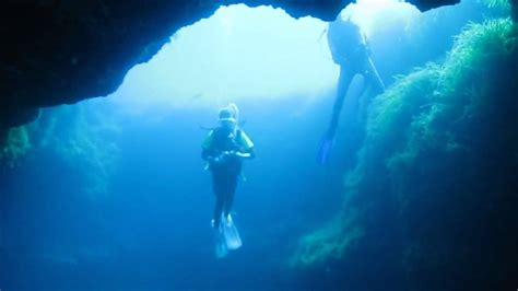 dive malta diving malta wrecks reefs a cave and a seahorse