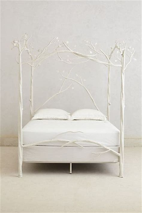 Forest Canopy Bed Canopy Beds Canopies And Forests On Pinterest