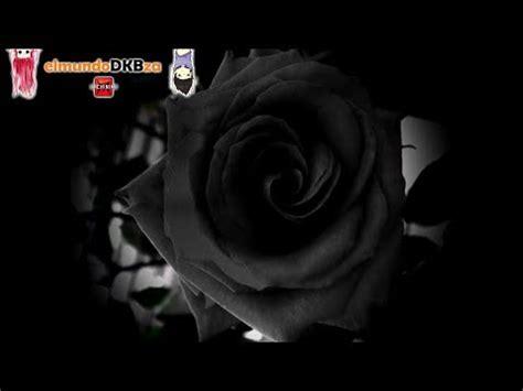 imagenes arañas negras el misterioso caso de las rosas negras de halfeti