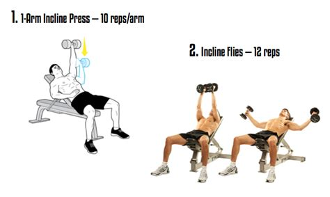 chest workout the regions contain several